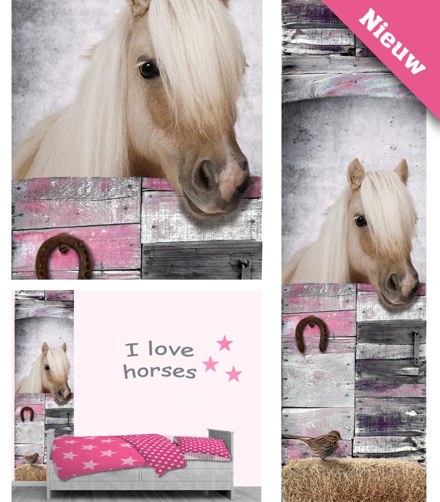 paarden muursticker, muurstickers meisjeskamer