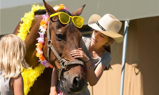 Penny weekend l een weekend samen met je eigen paard bij farmcamps - Kamer paard meisje ...
