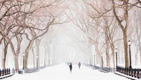 veilige winterse rit met je gezin