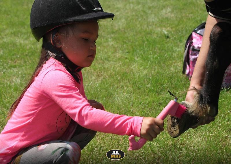 dierendag 4 okt, dierendag, paardenmeisje, roze paardenkleed, roze paardensokken, paardenliefhebster