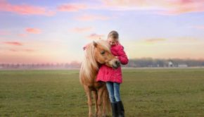 dierendag 4 oktober, dierendag, paardenmeisje, roze paardenkleed, roze paardensokken, paardenliefhebster