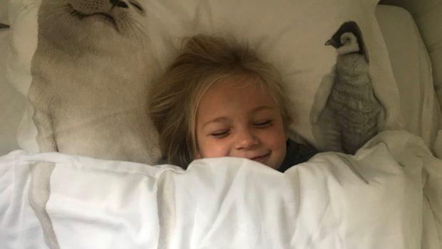 snurk beddegoed, snurk antarctica, snurk dekbedovertrek, snurk dieren, snurk winactie