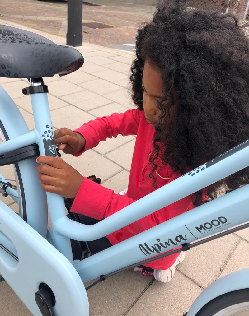 lichtblauwe meisjes fiets