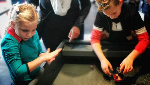 leuke musea voor kinderen, museumkids, leuk museum voor kinderen