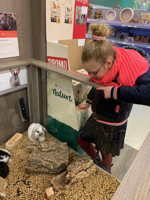 konijn als huisdier, huisdier kopen, dierenwinkel