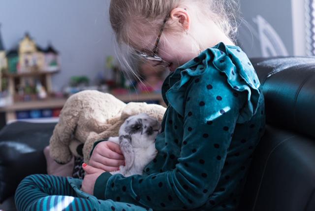 mijn kind wil een huisdier, huisdieren, huisdieren en kinderen, konijn