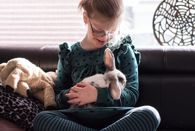mijn kind wil een huisdier, huisdieren, huisdieren en kinderen, mijn kind wil een konijn