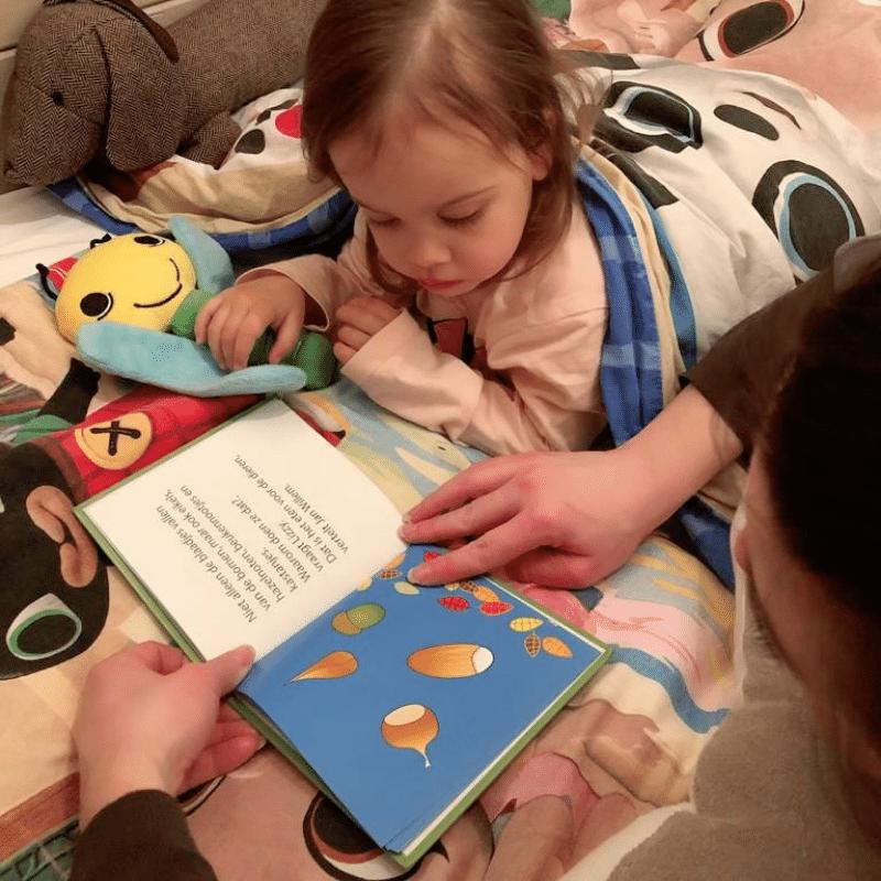 Lizzy de Vlinder kinderboeken, Lizzy de Vlinder boekjes, Lizzy de Vlinder knuffel, odiles giftshop, lizzy en de egel