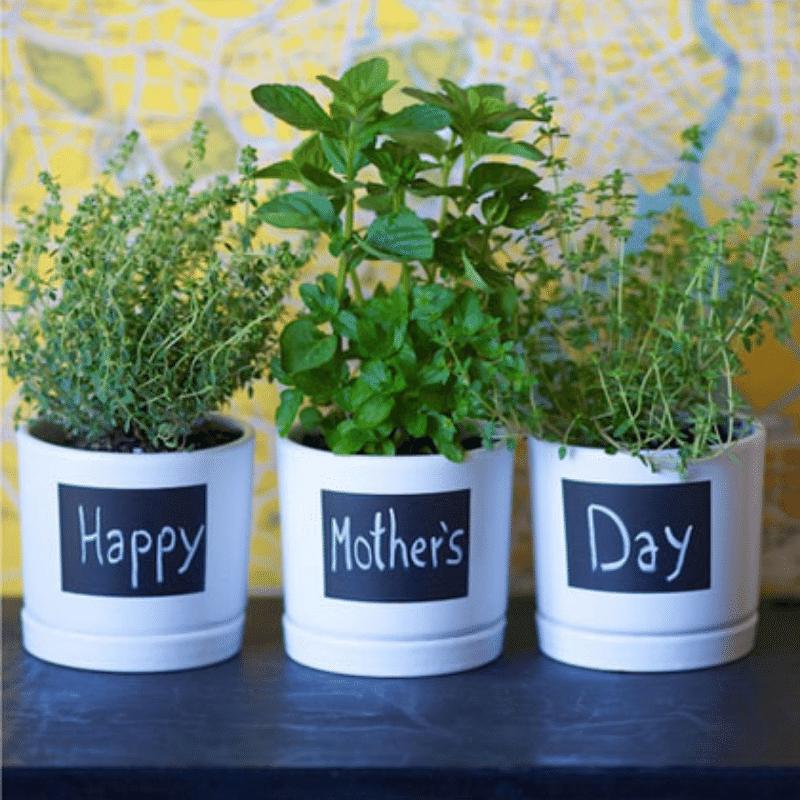 kruidenpotjes zelf maken, moederdag knutsel tip,  moederdag cadeautje zelf maken, zelfgemaakt moederdag cadeautje , knutselen voor moederdag