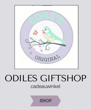 Hippe en originele online webshops, lifestyle producten, lieve cadeautjes, leuke hebbedingen, kinderkamer accessoires voor meisjes, odiles giftshop, cadeauwinkel